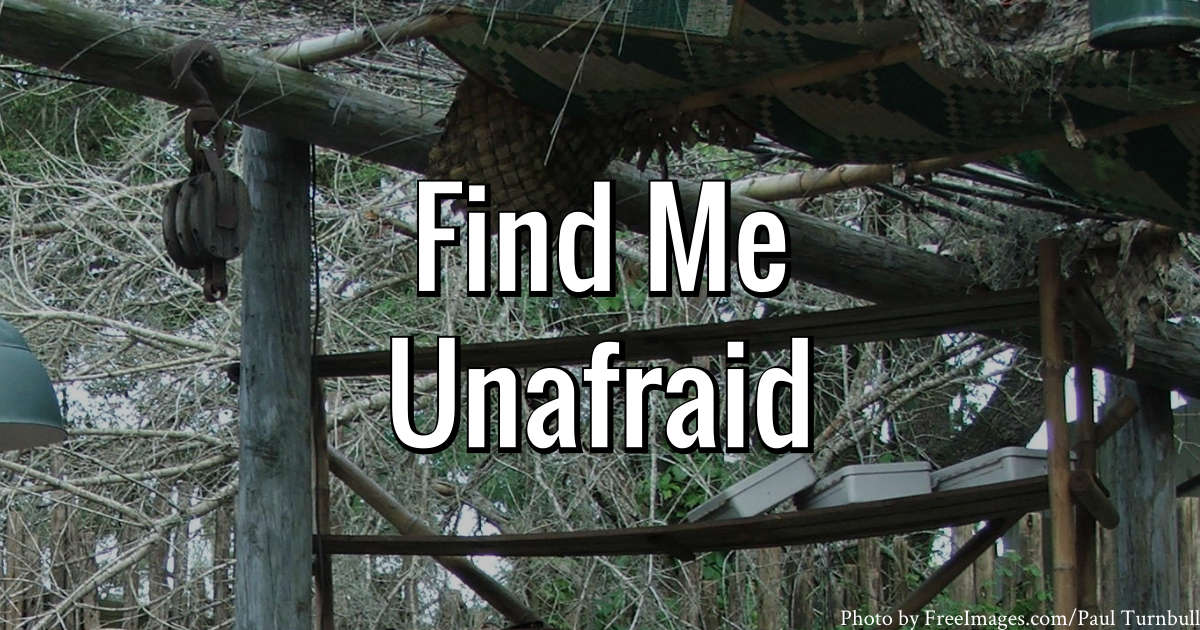 Find Me Unafraid